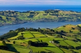 agricultural;agriculture;country;countryside;Dunedin;farm;farming;farmland;farms;field;fields;Martins-Hill;meadow;meadows;N.Z.;New-Zealand;NZ;Otago;Otago-Harbor;Otago-Harbour;Otago-Peninsula;paddock;paddocks;pasture;pastures;polarised;polarized;rural;shelter-belt;shelter-belts;shelter_belt;shelter_belts;shelterbelt;shelterbelts;South-Is;South-Island;Sth-Is;unpolarised;unpolarized;Upper-Junction;wind-break;wind-breaks;wind_break;wind_breaks;windbreak;windbreaks