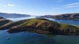 aerial;Aerial-drone;Aerial-drones;aerial-image;aerial-images;aerial-photo;aerial-photograph;aerial-photographs;aerial-photography;aerial-photos;aerial-view;aerial-views;aerials;Drone;Drones;Dunedin;harbor;harbors;harbour;harbours;N.Z.;New-Zealand;NZ;Otago;Otago-Harbor;Otago-Harbour;Otago-Peninsula;Portobello;Portobello-Peninsula;Quadcopter-aerial;Quadcopters-aerials;South-Is;South-Island;Sth-Is;U.A.V.-aerial;UAV-aerials