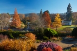 autuminal;autumn;autumn-colour;autumn-colours;autumn-tree;autumn-trees;autumnal;Botanic-Garden;Botanic-Gardens;Botanical-Garden;Botanical-Gardens;city-garden;city-gardens;color;colors;colour;colours;council-garden;council-gardens;deciduous;Dunedin;Dunedin-Botanic-Garden;Dunedin-Botanic-Gardens;Dunedin-Botanical-Garden;Dunedin-Botanical-Gardens;Dunedin-Gardens;fall;garden;gardens;leaf;leaves;N.Z.;New-Zealand;North-Dunedin;NZ;Otago;plant;plants;S.I.;season;seasonal;seasons;SI;South-Is;South-Is.;South-Island;Sth-Is;tree;trees