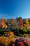 autuminal;autumn;autumn-colour;autumn-colours;autumn-tree;autumn-trees;autumnal;Botanic-Garden;Botanic-Gardens;Botanical-Garden;Botanical-Gardens;city-garden;city-gardens;color;colors;colour;colours;council-garden;council-gardens;deciduous;Dunedin;Dunedin-Botanic-Garden;Dunedin-Botanic-Gardens;Dunedin-Botanical-Garden;Dunedin-Botanical-Gardens;Dunedin-Gardens;fall;garden;gardens;leaf;leaves;N.Z.;New-Zealand;North-Dunedin;NZ;Otago;plant;plants;S.I.;season;seasonal;seasons;SI;South-Is;South-Is.;South-Island;Sth-Is;tree;trees