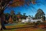 autuminal;autumn;autumn-colour;autumn-colours;autumn-tree;autumn-trees;autumnal;Botanic-Garden;Botanic-Gardens;Botanical-Garden;Botanical-Gardens;city-garden;city-gardens;color;colors;colour;colours;council-garden;council-gardens;deciduous;Dunedin;Dunedin-Botanic-Garden;Dunedin-Botanic-Gardens;Dunedin-Botanical-Garden;Dunedin-Botanical-Gardens;Dunedin-Gardens;fall;garden;gardens;leaf;leaves;N.Z.;New-Zealand;North-Dunedin;NZ;Otago;plant;plants;S.I.;season;seasonal;seasons;SI;South-Is;South-Is.;South-Island;Sth-Is;tree;trees;Winter-Garden;Winter-gardens