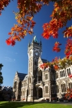 autuminal;autumn;autumn-colour;autumn-colours;autumnal;building;buildings;clock-tower;clock_tower;color;colors;colour;colours;deciduous;Dunedin;fall;heritage;historic;historic-building;historic-buildings;historical;historical-building;historical-buildings;history;leaf;leaves;N.Z.;New-Zealand;NZ;oak-leaf;oak-leaves;oak-tree;oak-trees;oaks;old;Otago-University;pin-oak;pin-oaks;registry-building;S.I.;season;seasonal;seasons;SI;South-Is.;South-Island;tradition;traditional;tree;trees;University-of-Otago