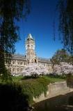 bloom;blooming;blooms;blossom;blossoming;blossoms;building;buildings;Clock-Tower;Clock-Towers;college;colleges;Dunedin;education;fresh;grow;growth;heritage;historic;historic-building;historic-buildings;historical;historical-building;historical-buildings;Historical-Registry-Building;history;Leith-Stream;N.Z.;New-Zealand;NZ;old;Otago;Otago-University;Registry-Building;renew;S.I.;season;seasonal;seasons;SI;South-Is.;South-Island;spring;springtime;tertiary-education;tradition;traditional;universities;University-of-Otago;Water-of-Leith;Waters-of-Leith