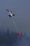 air-craft;aircraft;aircrafts;aviating;aviation;aviator;aviators;Bel-Jet-Ranger;Bel-Jet-Rangers;Bell-206B;Bell-Jetranger;Bell-Jetrangers;bucket;buckets;chopper;choppers;douse;Dunedin;emergency;fire;fire-fighters;fire-fighting;fire_fighting;firefighting;fires;flight;flights;fly;flyer;flyers;flying;Forest-Fire;Forest-Fires;Helicopter;Helicopters;Helicopters-Otago;Jet_ranger;Jet_rangers;monsoon-bucket;monsoon-buckets;N.Z.;New-Zealand;NZ;pilot;pilots;pine;pine-forest;pine-forests;pine-tree;pine-trees;pines;rotor;S.I.;SI;sky;smoke;smokey;South-Island;water-biuckets;water-bucket