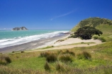 beach;beaches;coast;coastal;coastline;East-Cape;east-coast;East-Island;Eastland;is.;island;islands;new-zealand;north-is.;north-island;ocean;oceans;sand;sandy;sea;shore;shoreline;surf;wave;waves;Whangaokena