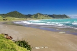 beach;beaches;coast;coastal;coastline;East-Cape;east-coast;Eastland;new-zealand;north-is.;north-island;ocean;oceans;sand;sandy;sea;shore;shoreline;surf;wave;waves
