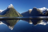 calm;coast;coastal;coastline;fiord;fiordland;Fiordland-N.P;Fiordland-National-Park;Fiordland-NP;Fiords;Fjord;Fjords;foreshore;island;kb1a5565;milford;milford-sound;mitre;mitre-peak;mountain;mountain-peak;mountains;N.Z.;national;national-park;National-parks;new;new-zealand;NZ;park;peak;peaks;perfect-reflection;perfect-reflections;placid;Quiet;reflection;reflections;S.I.;serene;shore;shoreline;SI;smooth;snow;snow-capped;snow_capped;snowcapped;sound;sounds;south;South-Is.;South-Island;south-west-new-zealand-world-her;Southland;still;summit;summits;te-wahipounamu;te-wahipounamu-south_west-new;tranquil;water;World-Heritage-Area;World-Heritage-Site;zealand