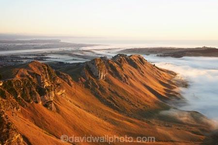 break-of-day;dawn;dawning;daybreak;first-light;fog;foggy;fogs;Hawke-Bay;Hawkes-Bay;mist;mists;misty;morning;N.I.;N.Z.;New-Zealand;NI;North-Island;NZ;sunrise;sunrises;sunup;Te-Mata-Peak;view;views