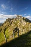 agricultural;agriculture;country;countryside;farm;farming;farmland;farms;fence;fence-line;fence-lines;fence_line;fence_lines;fenceline;fencelines;fences;field;fields;Hawkes-Bay;Hawkes-Bay;meadow;meadows;N.I.;N.Z.;New-Zealand;NI;North-Is;North-Is.;North-Island;NZ;paddock;paddocks;pasture;pastures;rural;Te-Mata-Peak;Te-Mata-Pk