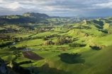 agricultural;agriculture;country;countryside;farm;farming;farmland;farms;field;fields;grass;green;Hawkes-Bay;Hawkes-Bay;Kohinurakau-Ra;Kohinurakau-Range;lush;meadow;meadows;N.I.;N.Z.;New-Zealand;NI;North-Is;North-Is.;North-Island;NZ;paddock;paddocks;pasture;pastures;rural;season;seasonal;seasons;spring;springtime;Tukituki-River-Valley;verdant