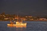 boat;boats;calm;calmness;coast;coastal;coastline;coastlines;coasts;dawn;early-light;early-morning;fishing-boat;fishing-boats;Kaikoura;Kaikoura-Coast;Marlborough;N.Z.;New-Zealand;NZ;ocean;oceans;Pacific-Ocean;S.I.;sea;Seaward-Kaikoura-Range;Seaward-Kaikoura-Ranges;shore;shoreline;shorelines;shores;SI;South-Island;still;stillness;water