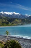 bay;bays;beach;beaches;cabbage-tree;cabbage-trees;coast;coastal;coastline;coastlines;coasts;cordolyne-australis;flax;flaxes;Kaikoura;Kaikoura-Coast;Mangamaunu;Marlborough;N.Z.;New-Zealand;NZ;ocean;oceans;Pacific-Ocean;S.I.;sea;seas;Seaward-Kaikoura-Ranges;shore;shoreline;shorelines;shores;SI;snow;snow-capped;South-Is;South-Island;Sth-Is;water