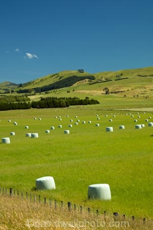 agricultural;agriculture;bale;bales;blue-skies;blue-sky;country;countryside;farm;farming;farmland;farms;field;fields;hay;hay-bale;hay-bales;hill;hills;Lower-North-Island;Martinborough;meadow;meadows;N.I.;N.Z.;New-Zealand;NI;North-Is;North-Island;NZ;paddock;paddocks;pasture;pastures;rural;sky;Wairarapa