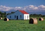 farm;rural;grass;agriculture;farming;farms;pasture;paddock;paddocks;field;fields;meadow;meadows;pastures;wairarapa;north-island;farmland;martinborough;lush;green;verdant;fertile;hay;haybale;haybales;hay-bale;hay-bales;shed;house;derelict;bale;bales