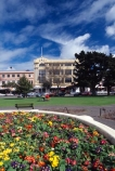 The-Square;square;Palmerston-North;palmerston;flower;flowers;flower-garden;manawatu;north-island;city;cities