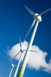 alternative-energies;alternative-energy;electrical;electricity;electricity-generation;electricity-generators;Enercon-E40;energy;environment;environmental;generation;generator;generators;Genesis-Energy;Hau-Nui-Wind-Farm;industrial;industry;Martinborough;N.I.;N.Z.;New-Zealand;NI;North-Island;NZ;power-generation;power-generators;propeller;propellers;renewable-energies;renewable-energy;spin;spining;sustainable-energies;sustainable-energy;turn;turning;Wairarapa;wind;wind-farm;wind-farms;wind-generator;wind-generators;wind-power;wind-power-plant;wind-power-plants;wind-turbine;wind-turbines;wind_farm;wind_farms;windfarm;windfarms;windmill;windmills;windturbine;windturbines;windy