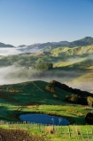 agricultural;agriculture;cloud;cloudy;country;countryside;early-morning;farm;farming;farmland;farms;field;fields;fog;foggy;Hikawera;Hinakura;irrigation-dam;irrigation-dams;Martinborough;meadow;meadows;mist;misty;N.I.;N.Z.;New-Zealand;NI;North-Island;NZ;paddock;paddocks;pasture;pastures;pond;ponds;pool;pools;reservoir;reservoirs;rural;Wairarapa