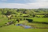 agricultural;agriculture;country;countryside;dam;dams;farm;farming;farmland;farms;field;fields;Fresh;green;grow;Growth;island;Lower-North-Island;lush;masterton;meadow;meadows;N.I.;N.Z.;near;new;new-zealand;NI;north;North-Is;north-is.;north-island;NZ;o8l0969;paddock;paddocks;pasture;pastures;pond;ponds;rural;season;seasonal;seasons;spring;springtime;Tauweru;wairarapa;zealand