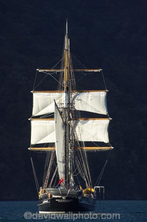 coast;coastal;coastline;Grove-Arm;Marlborough;Marlborough-Sounds;mast;masts;Momorangi-Bay;New-Zealand;Queen-Charlotte-Sound;sail;sailing-ship;sailing-ships;sails;South-Island;Spirit-of-Adventure;Spirit-of-New-Zealand;tall-ship;tall-ships