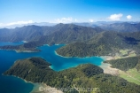 aerial;aerials;bay;bays;beautiful;beauty;bush;coast;coastal;coastline;coastlines;coasts;cove;coves;duncan-bay;endemic;forest;forests;green;harvey-bay;inlet;inlets;marlborough;Marlborough-Sounds;native;native-bush;natives;natural;nature;new-zealand;ngawhakawhiti-bay;nz;penzance-bay;scene;scenic;sea;shore;shoreline;shorelines;shores;sound;sounds;south-island;te-mako-bay;tennyson-inlet;tree;trees;tuna-bay;water;woods;worlds-end;worlds-end