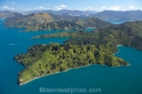 aerial;aerials;bay;bays;beautiful;beauty;bush;coast;coastal;coastline;coastlines;coasts;cove;coves;endemic;forest;forests;green;inlet;inlets;marlborough;Marlborough-Sounds;native;native-bush;natives;natural;nature;new-zealand;nz;queen-charlotte-sound;scene;scenic;sea;shore;shoreline;shorelines;shores;sound;sounds;south-island;Torea-Bay;tree;trees;water;woods