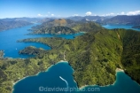 aerial;aerials;bay;bays;beautiful;beauty;boat;boats;bush;coast;coastal;coastline;coastlines;coasts;cove;coves;cruise;cruises;Double-Cove;endemic;forest;forests;green;inlet;inlets;launch;launches;Lochmara-Bay;marlborough;Marlborough-Sounds;native;native-bush;natives;natural;nature;new-zealand;nz;pleasure-boat;pleasure-boats;queen-charlotte-sound;scene;scenic;sea;shore;shoreline;shorelines;shores;sound;sounds;south-island;speed-boat;speed-boats;torea-bay;tree;trees;wake;water;woods