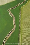 aerial;aerials;agricultural;agriculture;blenheim;brook;brooks;country;countryside;creek;creeks;crop;crops;cultivate;cultivation;farm;farming;farmland;farms;field;fields;flow;geometric;geometric-shapes;grape;grapes;grapevine;graphic;horticulture;marlborough;meadow;meadows;n.z.;New-Zealand;nz;paddock;paddocks;pasture;pastures;row;rows;rural;shape;shapes;South-Island;stream;streams;vine;vines;vineyard;vineyards;vintage;water;wet;wine;wineries;winery;wines