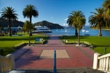 Foreshore-Reserve;Marlborough;Marlborough-Sounds;N.Z.;New-Zealand;NZ;palm;palm-tree;palm-trees;palms;park;parks;Picton;Picton-Foreshore-Reserve;Picton-Harbor;Picton-Harbour;Queen-Charlotte-Sound;S.I.;SI;South-Is;South-Island;Sth-Is