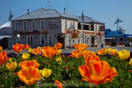 ale-house;ale-houses;Aotearoa;bar;bars;bloom;blooming;blooms;brown;Brown-Pub;building;buildings;Canterbury;floral;flower;flower-bed;flower-beds;flower-garden;flower-gardens;flowers;free-house;free-houses;garden;gardens;heritage;historic;historic-building;historic-buildings;historic-hotel;historic-pub;historical;historical-building;historical-buildings;history;hotel;hotels;Methven;Mid-Canterbury;N.Z.;New-Zealand;NZ;old;pub;public-flower-garden;public-garden;public-gardens;public-house;public-houses;pubs;saloon;saloons;season;seasonal;seasons;South-Is;South-Island;spring;spring-time;spring_time;springtime;Sth-Is;tavern;taverns;The-Brown-Pub