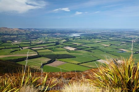agricultural;agriculture;Aotearoa;Canterbury;Canterbury-Plains;country;countryside;crop;crops;farm;farming;farmland;farms;field;fields;flax;flax-bush;flax-bushes;flaxes;horticulture;meadow;meadows;Mid-Canterbury;Mount-Hutt;Mt-Hutt;Mt.-Hutt;N.Z.;New-Zealand;NZ;paddock;paddocks;pasture;pastures;Rakaia-River;rural;South-Is;South-Island;Sth-Is;view;wind-break;wind-breaks;windbreak;windbreaks