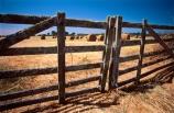 agriculture;bale;bales;crop;crops;dry;farm;farming;farmland;farms;feed-out;fence;fenceline;fences;field;fields;gate;gates;hay;haybale;haybales;hayfield;paddock;paddocks;summer;winter-feed