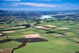 agriculture;crop;crops;farm;farming;farmland;farms;fence;fenceline;fences;field;fields;flat;flats;grass;green;hedgerow;hedgerows;lamb;lambs;meadow;meadows;mountain;mountains;paddock;paddocks;pasture;pastures;plains;range;rural;sheep;spring;wind-break;windbreak;windbreaks