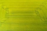 aerial;Aerial-drone;Aerial-drones;aerial-image;aerial-images;aerial-photo;aerial-photograph;aerial-photographs;aerial-photography;aerial-photos;aerial-view;aerial-views;aerials;agricultural;agriculture;canolla;canolla-field;canolla-fields;Canterbury;country;countryside;crop;crops;Drone;Drones;farm;farming;farmland;farms;field;fields;flower;flowers;horticulture;meadow;meadows;Methven;Mid-Canterbury;N.Z.;New-Zealand;NZ;paddock;paddocks;pasture;pastures;pattern;patterns;Quadcopter-aerial;Quadcopters-aerials;rapeseed;rapeseed-field;rural;S.I.;season;seasonal;seasons;SI;South-Is;South-Island;spring;spring-time;spring_time;springtime;Sth-Is;tire-tracks;tractor-tracks;tyre-tracks;U.A.V.-aerial;UAV-aerials;wheel-tracks;yellow;yellow-flower;yellow-flowers