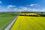 aerial;Aerial-drone;Aerial-drones;aerial-image;aerial-images;aerial-photo;aerial-photograph;aerial-photographs;aerial-photography;aerial-photos;aerial-view;aerial-views;aerials;agricultural;agriculture;canolla;canolla-field;canolla-fields;Canterbury;country;countryside;crop;crops;Drone;Drones;farm;farming;farmland;farms;field;fields;flower;flowers;horticulture;meadow;meadows;Methven;Methven-Chertsey-Rd;Methven-Chertsey-Road;Methven_Chertsey-Road;Mid-Canterbury;Mount-Hutt;mountain;mountains;Mt-Hutt;N.Z.;New-Zealand;NZ;paddock;paddocks;pasture;pastures;Quadcopter-aerial;Quadcopters-aerials;rapeseed;rapeseed-field;rural;S.I.;season;seasonal;seasons;SI;South-Is;South-Island;southern-alps;spring;spring-time;spring_time;springtime;Sth-Is;U.A.V.-aerial;UAV-aerials;yellow;yellow-flower;yellow-flowers