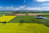 aerial;Aerial-drone;Aerial-drones;aerial-image;aerial-images;aerial-photo;aerial-photograph;aerial-photographs;aerial-photography;aerial-photos;aerial-view;aerial-views;aerials;agricultural;agriculture;canolla;canolla-field;canolla-fields;Canterbury;country;countryside;crop;crops;Drone;Drones;farm;farming;farmland;farms;field;fields;flower;flowers;horticulture;meadow;meadows;Methven;Mid-Canterbury;N.Z.;New-Zealand;NZ;paddock;paddocks;pasture;pastures;Quadcopter-aerial;Quadcopters-aerials;rapeseed;rapeseed-field;rural;S.I.;season;seasonal;seasons;SI;South-Is;South-Island;Southern-Alps;spring;spring-time;spring_time;springtime;Sth-Is;tire-tracks;tractor-tracks;tyre-tracks;U.A.V.-aerial;UAV-aerials;wheel-tracks;yellow;yellow-flower;yellow-flowers