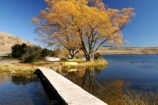 autumn;blue;boat;boats;bridge;bridges;calm;calmness;clean;clear;Daytime;dinghies;dinghy;dinghys;Exterior;fall;foot-bridge;foot-bridges;footbridge;footbridges;golden;high-country;idyllic;lake;lake-alexandrina;lakes;Leisure;mackenzie-country;Nature;new-zealand;Outdoor;Outdoors;Outside;Peaceful;Peacefulness;People;Person;Persons;pure;Quiet;Quietness;Recreation;Reflection;Reflections;row-boat;row-boats;scenery;Scenic;Scenics;season;seasonal;seasons;silence;south-island;tekapo;tranquil;tranquility;transparent;tree;trees;water;willow;willow-tree;willow-trees;willows;yellow