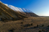 aerial;Aerial-drone;Aerial-drones;aerial-image;aerial-images;aerial-photo;aerial-photograph;aerial-photographs;aerial-photography;aerial-photos;aerial-view;aerial-views;aerials;Canterbury;Drone;Drones;Mackenzie-Country;Mackenzie-District;Mackenzie-Region;N.Z.;New-Zealand;NZ;Quadcopter-aerial;Quadcopters-aerials;SI;snow;snow-capped;snowy;South-Canterbury;South-Island;spring;Sth-Is;U.A.V.-aerial;UAV-aerials