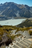 alpine;Aoraki-Mount-Cook-N.P.;Aoraki-Mount-Cook-National-Park;Aoraki-Mount-Cook-NP;Aoraki-N.P.;Aoraki-National-Park;Aoraki-NP;Canterbury;glacial-lake;glacial-lakes;hiking-path;hiking-paths;hiking-trail;hiking-trails;lake;lakes;Mackenzie-Country;Mackenzie-District;Mackenzie-Region;Mount-Cook-N.P.;Mount-Cook-National-Park;Mount-Cook-NP;mountain;mountains;Mt-Cook-N.P.;Mt-Cook-National-park;Mt-Cook-NP;Mueller-Lake;N.Z.;national-parks;New-Zealand;NZ;path;paths;pathway;pathways;route;routes;S.I.;Sealy-Range;South-Is;South-Island;Southern-Alps;stair;stairs;step;steps;Sth-Is;track;tracks;trail;trails;tramping-trail;tramping-trails;view;walking-path;walking-paths;walking-trail;walking-trails;walkway;walkways