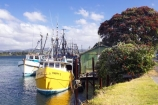 boat;boats;commercial-fishing;fishing;fishing-boat;Fishing-Boats;new-zealand;north-is.;north-island;Tauranga;Tauranga-Harbour;trawler