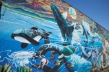 art;Chris-Finlayson;Golden-Bay;Mural;murals;N.Z.;Nelson-Region;New-Zealand;NZ;public-art;public-art-work;public-art-works;S.I.;SI;South-Is.;South-Island;Takaka;Village-Green-Society
