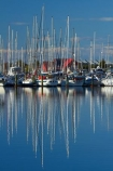 boat;boat-harbor;boat-harbors;boat-harbour;boat-harbours;boats;calm;calmness;coast;coastal;coasts;cruiser;cruisers;harbor;harbors;harbour;harbours;hull;hulls;launch;launches;marina;marinas;mast;masts;N.Z.;Nelson;Nelson-City;Nelson-District;Nelson-Marina;Nelson-Region;New-Zealand;NZ;peaceful;peacefulness;placid;port;ports;quiet;reflected;reflection;reflections;S.I.;sail;sail-boat;sail-boats;sailboat;sailboats;sailing;serene;SI;smooth;South-Is;South-Is.;South-Island;Sth-Is;still;stillness;tranquil;tranquility;water;yacht;yachts