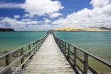 dune;dunes;harbor;harbors;harbour;harbours;hokianga;Hokianga-Harbour;jetties;jetty;new-zealand;north-is.;north-island;Northland;Omapere;pier;piers;sand-dune;Sand-Dunes;sand_dune;sand_dunes;te-pouahi;waterside;wharf;wharfes;wharves