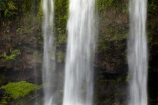 cascade;cascades;creek;creeks;falls;Hatea-River;N.I.;N.Z.;natural;nature;New-Zealand;NI;North-Is;North-Is.;North-Island;Northland;NZ;scene;scenic;stream;streams;Tikipunga;water;water-fall;water-falls;waterfall;waterfalls;wet;Whangarei;Whangarei-Falls;Whangarei-Waterfall