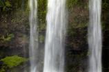 cascade;cascades;creek;creeks;falls;Hatea-River;N.I.;N.Z.;natural;nature;New-Zealand;NI;North-Is;North-Is.;North-Island;Northland;NZ;scene;scenic;stream;streams;Tikipunga;water;water-fall;water-falls;waterfall;waterfalls;wet;Whangarei;Whangarei-Falls;Whangarei-Waterfall