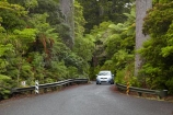 automobile;automobiles;car;cars;driving;highway;highways;kauri;kauri-bridge;kauri-bridges;Kauri-Coast;kauri-forest;kauri-forests;kauri-tree;kauri-trees;kauris;N.I.;N.Z.;New-Zealand;NI;North-Is;North-Is.;North-Island;Northland;NZ;open-road;open-roads;Road;road-trip;roads;state-highway-12;state-highway-twelve;Toyota-Carolla;Toyota-Carollas;tranportation;transport;transportation;travel;traveling;travelling;trip;trips;vehicle;vehicles;Waipoua;Waipoua-Forest;Waipoua-Kauri-forest