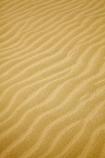 dune;dunes;Far-North;N.I.;N.Z.;New-Zealand;NI;North-Is;North-Is.;North-Island;Northland;NZ;pattern;patterns;ripple;ripples;sand;sand-dune;sand-dunes;sand-hill;sand-hills;sand-pattern;sand-patterns;sand-ripple;sand-ripples;sand_dune;sand_dunes;sand_hill;sand_hills;sanddune;sanddunes;sandhill;sandhills;sandy;Te-Paki-Creek;Te-Paki-Dunes;Te-Paki-Recreational-Reserve;Te-Paki-Reserve;Te-Paki-Sand-Dunes;Te-Paki-Sand-Hills;Te-Paki-Stream;water-pattern;water-patterns;wind-pattern;wind-patterns