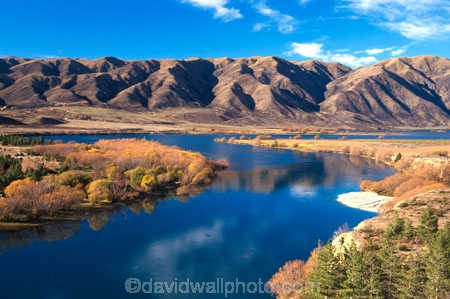 autumn;autumnal;fall;gold;golden;hydro-lake;hydro_electric;lakes;ranges;scenary;scenic;tree;trees;water;willow;willows