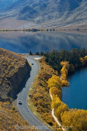 s-bend;s-bends;A2O;Alps-2-Ocean-cycle-trail;Alps-to-ocean-cycle-trail;autuminal;autumn;autumn-colour;autumn-colours;autumnal;bend;bends;Benmore-Ra;Benmore-Range;bike-track;bike-tracks;bike-trail;bike-trails;color;colors;colour;colours;corner;corners;curve;curves;cycle-track;cycle-tracks;cycle-trail;cycle-trails;cycleway;cycleways;deciduous;fall;gold;golden;highway;highways;lake;Lake-Benmore;lakes;leaf;leaves;N.Z.;New-Zealand;North-Otago;NZ;Omarama-Otematata-Highway;open-road;open-roads;Otago;road;roads;s-bend;s-bends;S.I.;Sailors-Cutting;Sailors-Cutting;season;seasonal;seasons;SI;South-Island;State-Highway-83;State-Highway-Eighty-Three;State-Highways;Sth-Is;Sth-Is.;tree;trees;Waitaki;Waitaki-District;Waitaki-Region;Waitaki-Valley;willow;willow-tree;willow-trees;willows;yellow