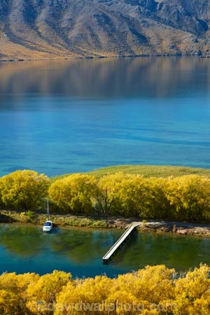 autuminal;autumn;autumn-colour;autumn-colours;autumnal;Benmore-Ra;Benmore-Range;color;colors;colour;colours;deciduous;dock;docks;fall;gold;golden;jetties;jetty;lake;Lake-Benmore;lakes;leaf;leaves;N.Z.;New-Zealand;North-Otago;NZ;Otago;pier;piers;quay;quays;S.I.;Sailors-Cutting;Sailors-Cutting;season;seasonal;seasons;SI;South-Island;Sth-Is;Sth-Is.;tree;trees;Waitaki;Waitaki-District;Waitaki-Region;Waitaki-Valley;waterside;wharf;wharfes;wharves;willow;willow-tree;willow-trees;willows;yellow