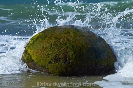 beach;beaches;boulder;coast;coastal;coastline;coastlines;coasts;concretion;foreshore;formation;geological;geology;marble;marbles;Moeraki;Moeraki-Boulder;Moeraki-Boulders;N.Z.;New-Zealand;North-Otago;NZ;ocean;Otago;Pacific-Ocean;rock;rocks;round;S.I.;sand;sea;sedimentary;shore;shoreline;shorelines;shores;SI;South-Is;South-Is.;South-Island;sphere;splash;splashes;splashing;Sth-Is;unusual-geologocal-feature;unusual-geologocal-features;unusual-natural-feature;unusual-natural-features;unusual-rock;unusual-rocks;Waikati-District;Waitaki-District;Waitaki-Region;water;wave;waves